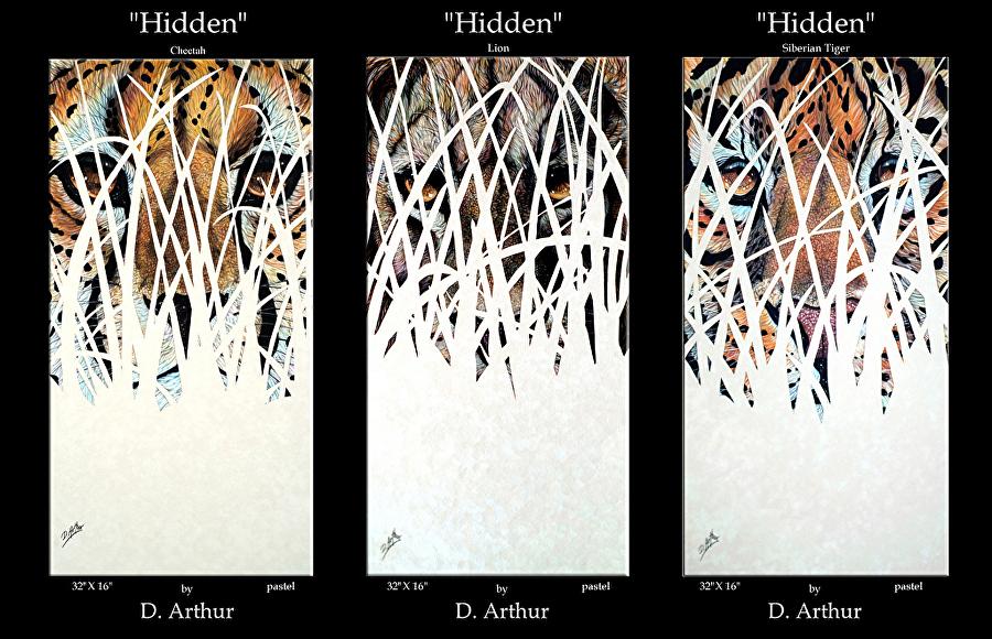 Hidden Series