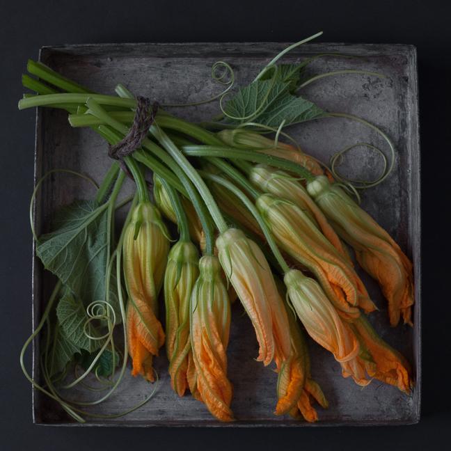 Squash Blossoms - The Tray Series