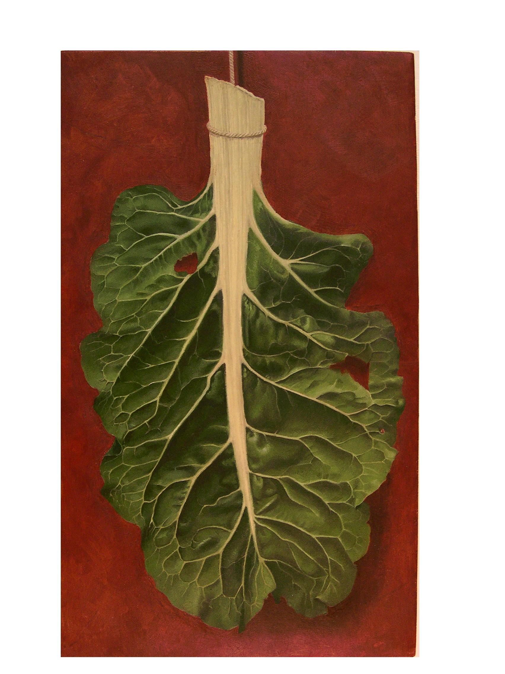 Leaf of Chard