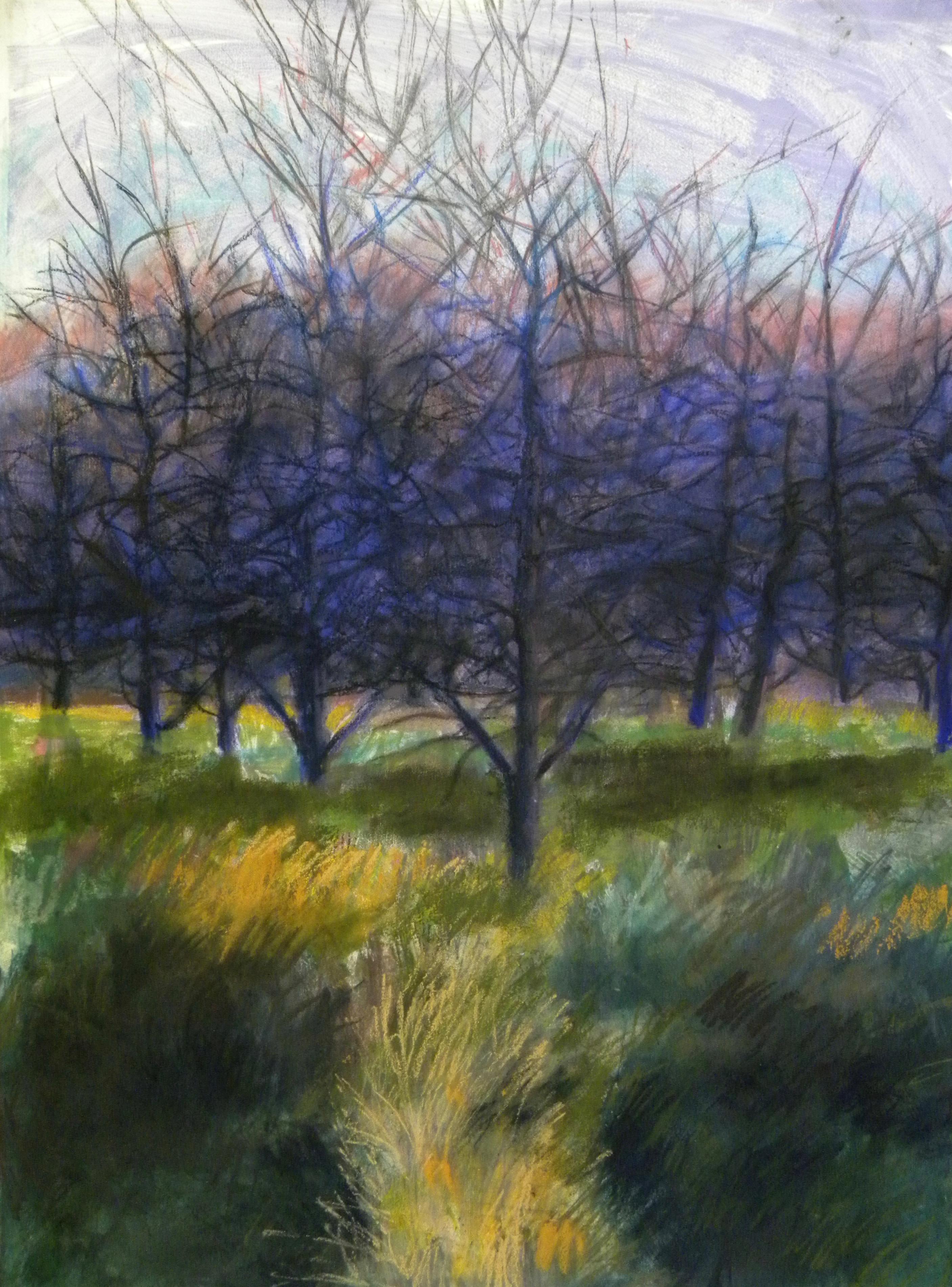 Orchard #1