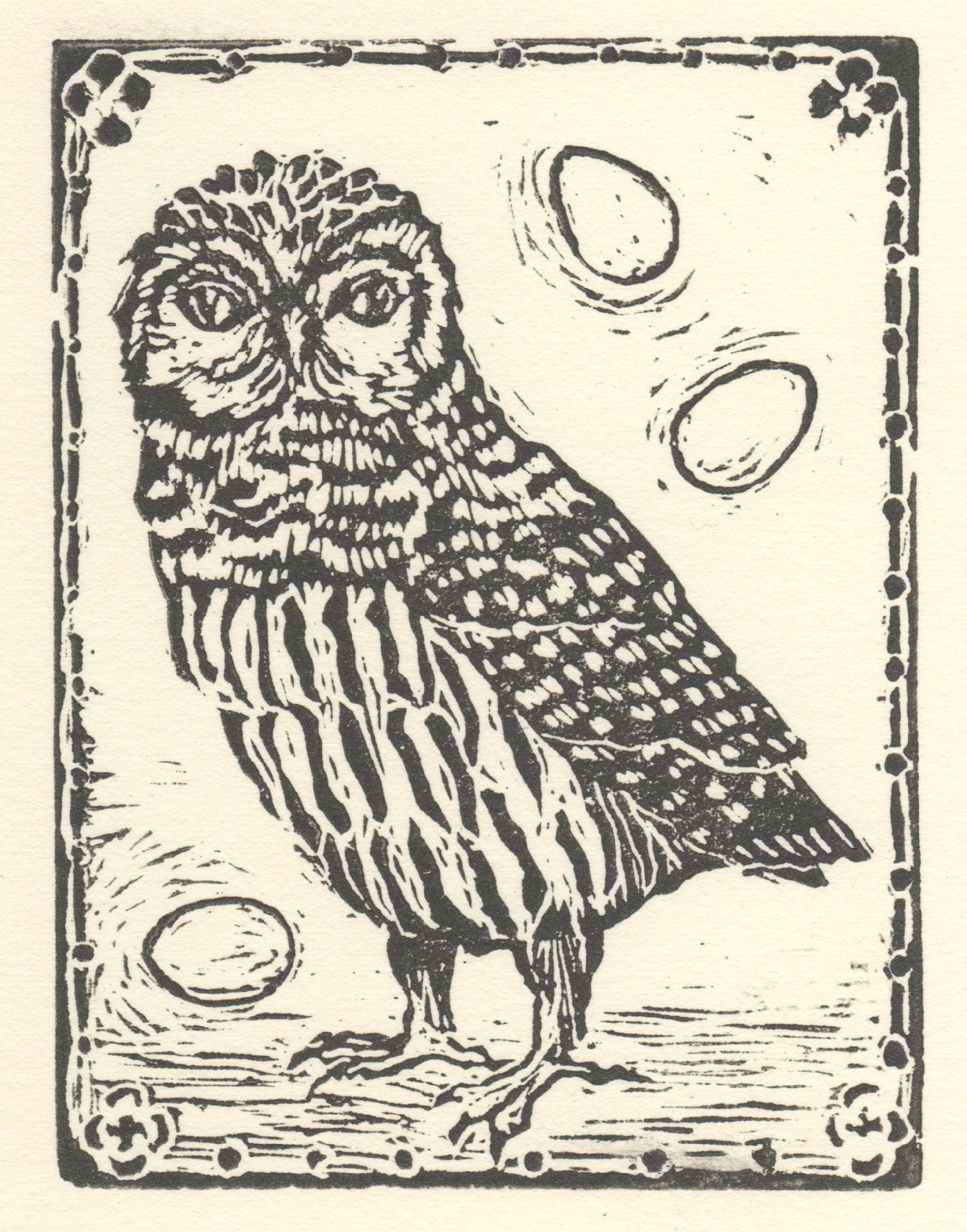 Owl With Eggs