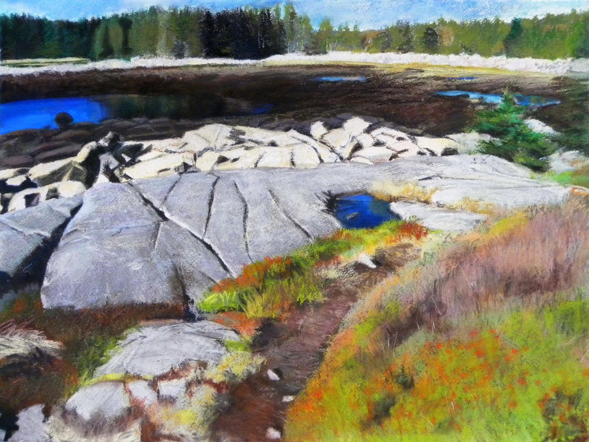 Little Moose Island 2