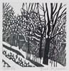A Snowy Lane (1/100)