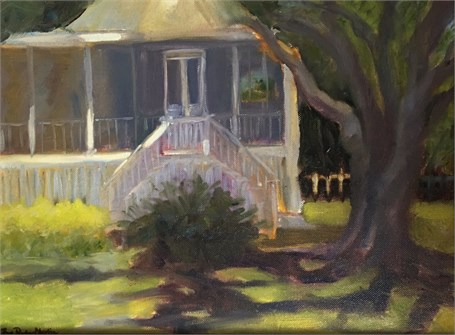 Sullivan's Sunshine and Shadow by Pam Porter Martin
