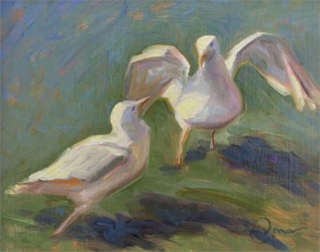 Seagull Samba