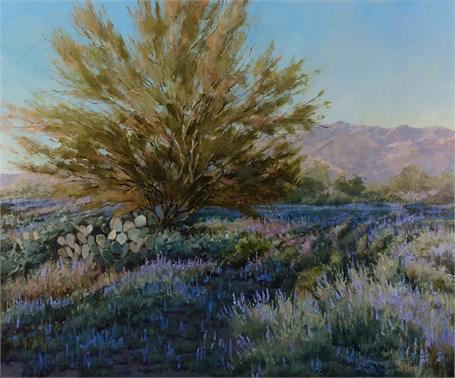 Desert Lupine Blues