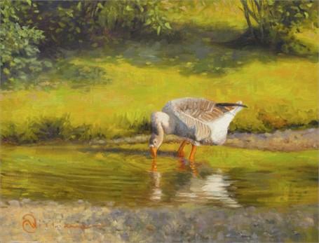 Goose Taking a Gander