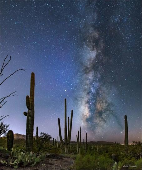 Milky Way Over - Saguaro National Park Tucson, Arizona - Drop Shipping Available