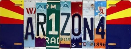 Lost License Plate - Arizona Specialty