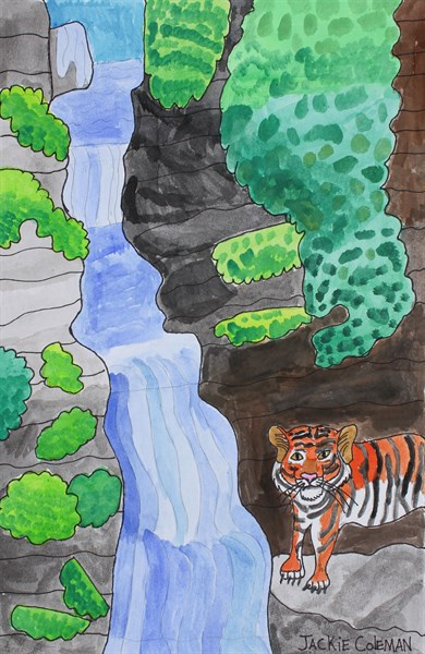 Tiger Near A Waterfall