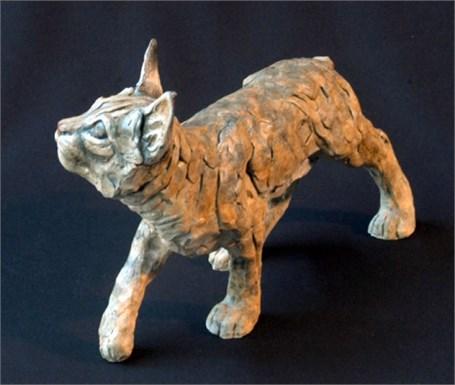Baby Bobcat II