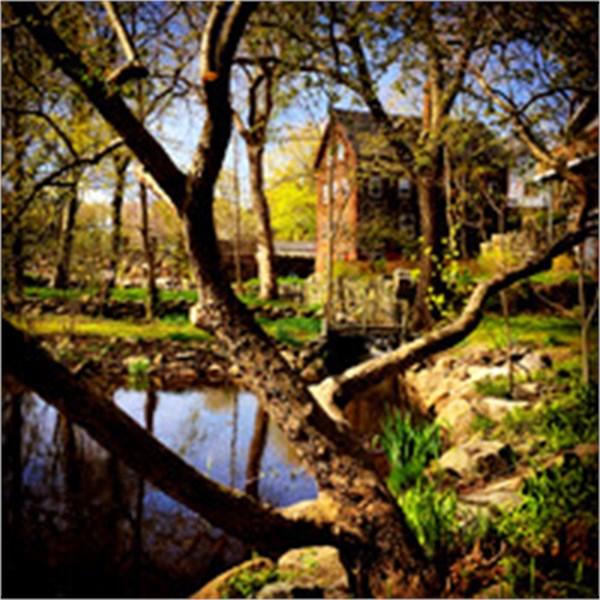 Millbrook Meadow, Rockport