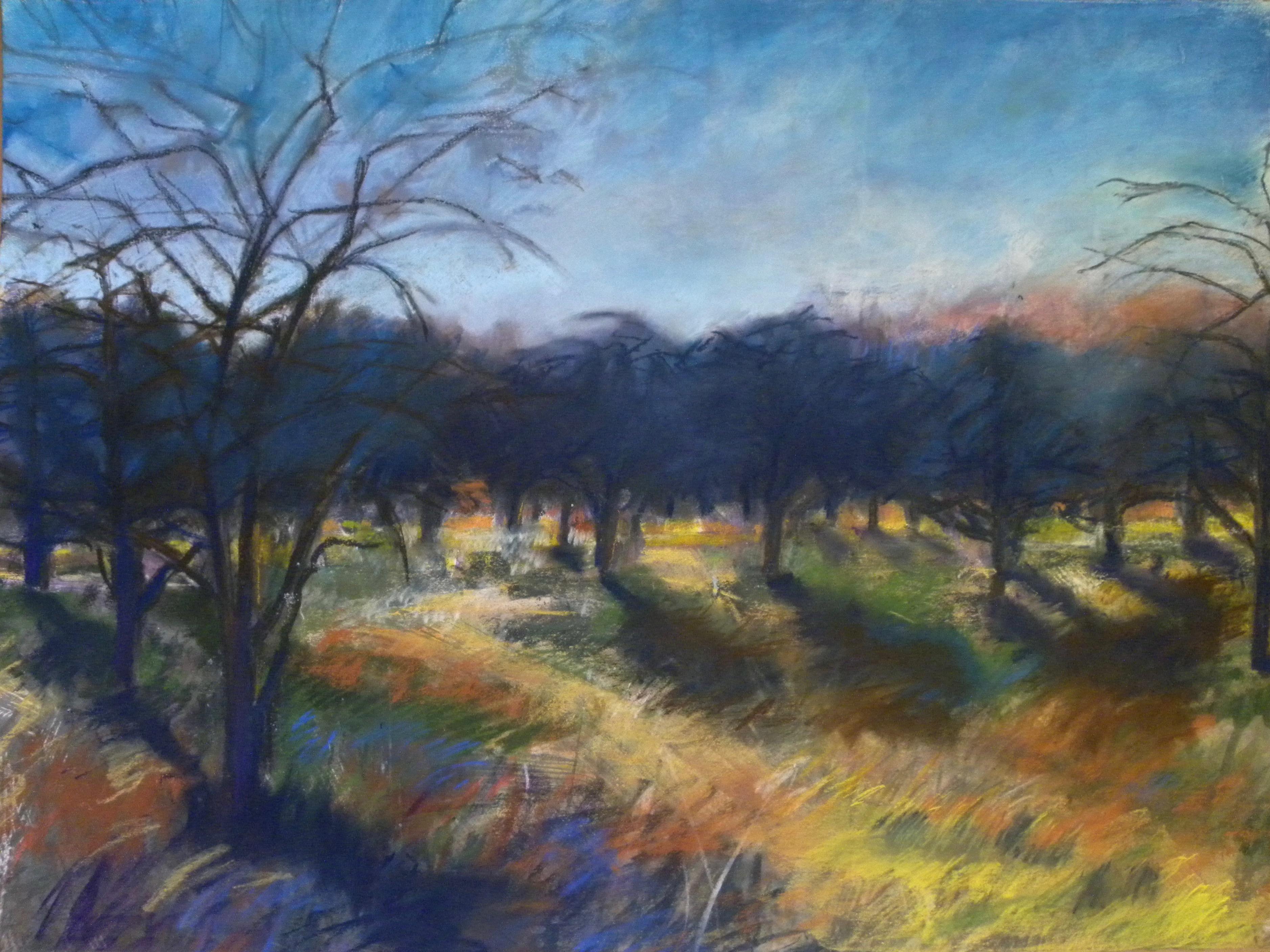Orchard #3
